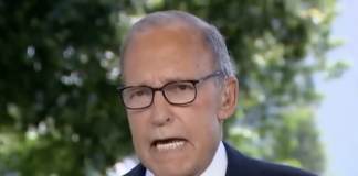 Trump economic adviser Larry Kudlow