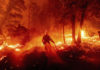 Firefighter and flames in California