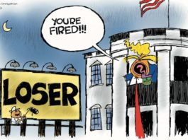 Cartoon: Loser